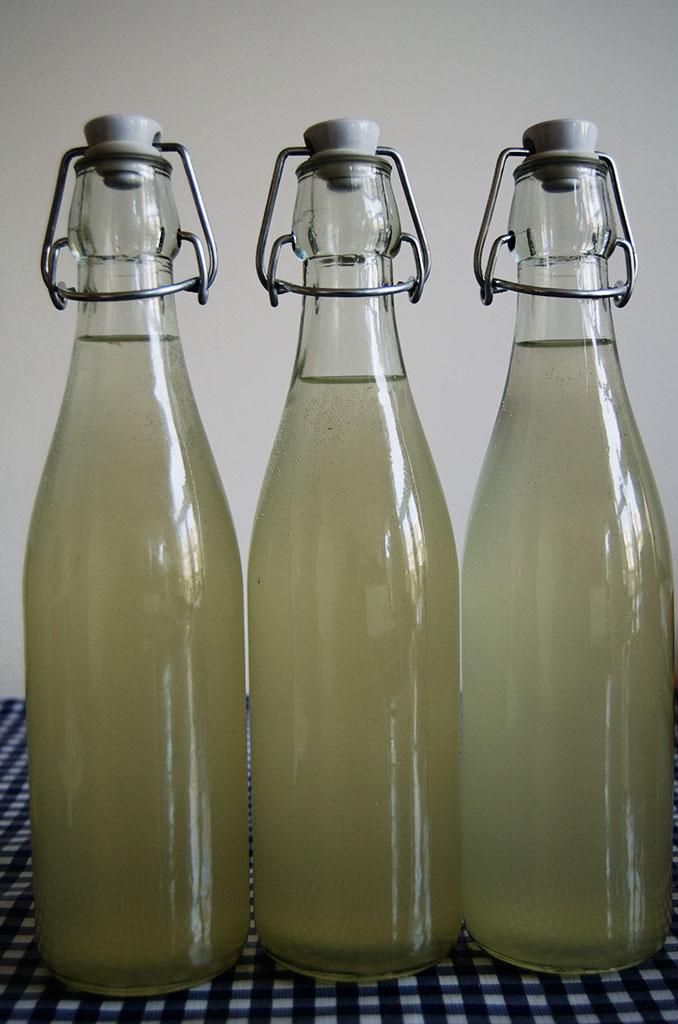 vlierbloesem-champagne
